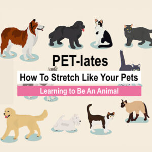 Stretch like your pets
